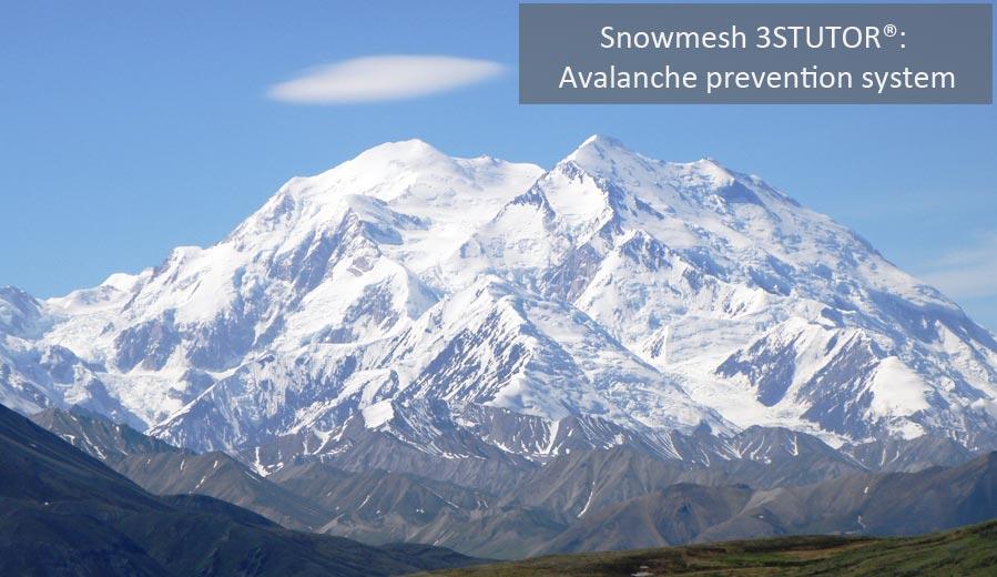 banner-sistema-snowmesh-en-1